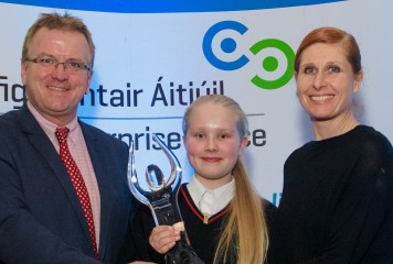 Student Enterprise Excellence in Fingal